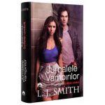 Intoarcerea. Suflete umbra, vol. 6 Jurnalele vampirilor