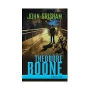 Theodore Boone: Rapirea