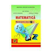 Matematica. Manual clasa a VI-a. Petrion