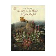 Au pays de la Magie – În ţara Magiei