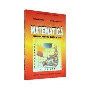 Matematica. Manual pentru clasa a VI-a - Udrea