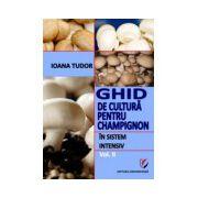 Ghid de cultura pentru champignon, in sistem intensiv