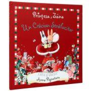 Printesa si Zana - Un Craciun Stralucitor (Anna Pignataro)