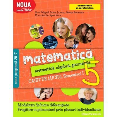 Matematică. Aritmetică, algebră, geometrie. Caiet de lucru. Clasa a 5-a. Semestrul I. Consolidare