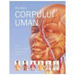 Atlasul corpului uman. Cum functioneaza organismul uman