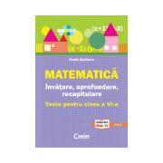 Matematica - invatare , aprofundare, recapitulare (teste pentru clasa a VI-a)
