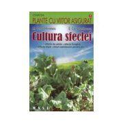 Cultura sfeclei. Sfecla de zahar, sfecla furajera, sfecla rosie, loturi semincere pentru sfecla