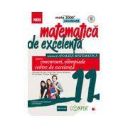 Matematica de excelenta. Pentru concursuri, olimpiade si centrele de excelenta, clasa a XI-a. Volumul II - Analiza matematica
