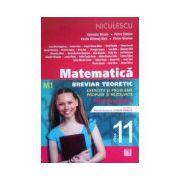 Matematica clasa a XI-a M1, breviar teoretic, exercitii si probleme propuse si rezolvari
