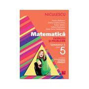 Matematică. Exerciţii şi probleme pentru clasa a V-a, semestrul II