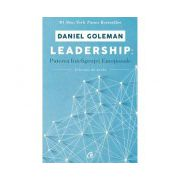 Leadership. Puterea inteligentei emotionale