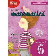 Matematică. Algebră, geometrie. Caiet de lucru. Clasa a VI-a. Semestrul II. Inițiere