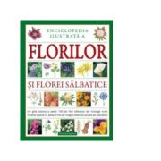 Enciclopedia ilustrata a florilor si florei salbatice