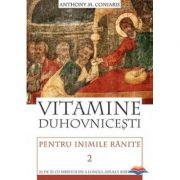 Vitamine duhovnicesti pentru inimile ranite. Zi de zi cu Hristos de‑a lungul anului bisericesc. vol. 2