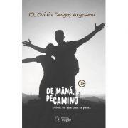 De mana pe Camino - Ovidiu Dragos Argesanu