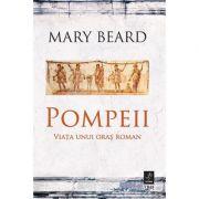Pompeii. Viața unui oraș roman