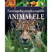 Enciclopedia vizuala a copiilor. Animalele - MICHAEL LEACH, MERIEL LLAND