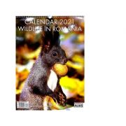 Calendar Wildlife in Romania 12 file 2021