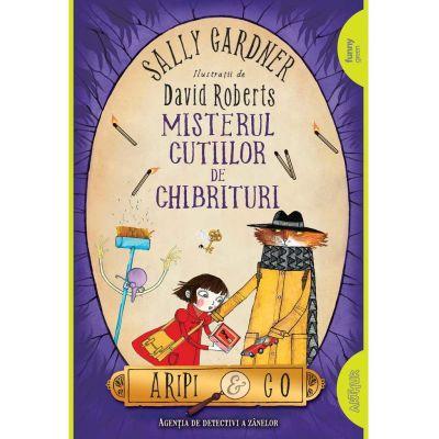 Misterul cutiilor de chibrituri | paperback - Sally Gardner