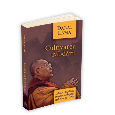 Cultivarea rabdarii - Tehnici budiste pentru a depasi mania si furia